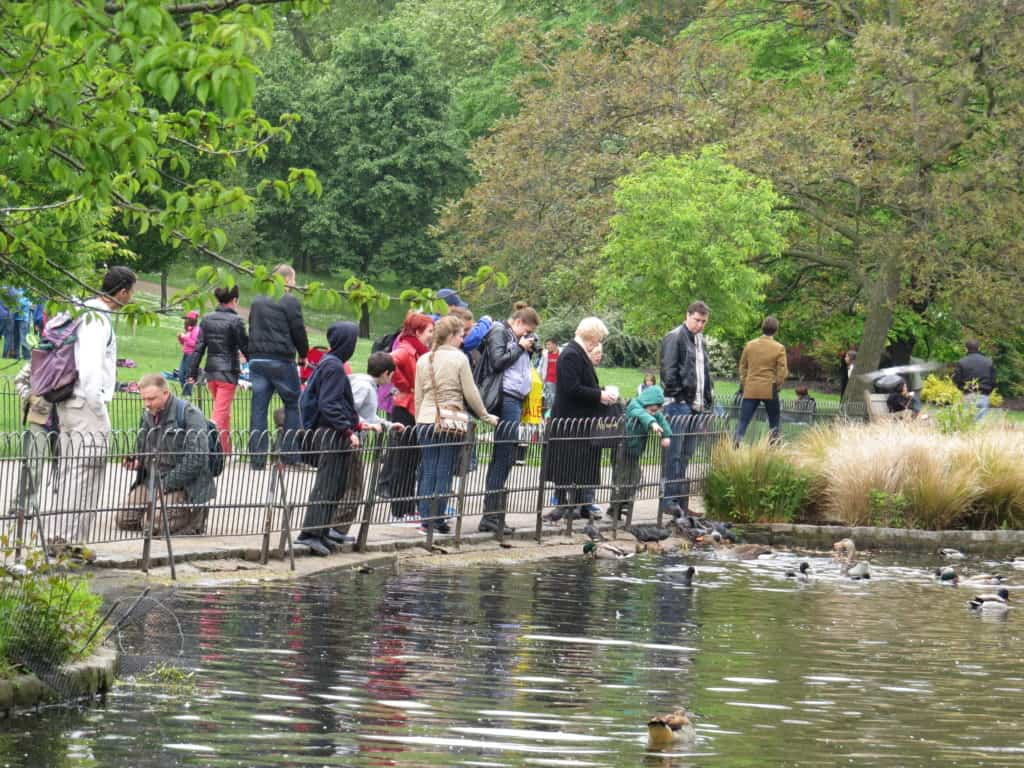 10 Free Family Activities in London: Feed the ducks at the royal parks