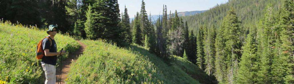 5 Exquisite Experiences Gained From Slow Traveling in Montana