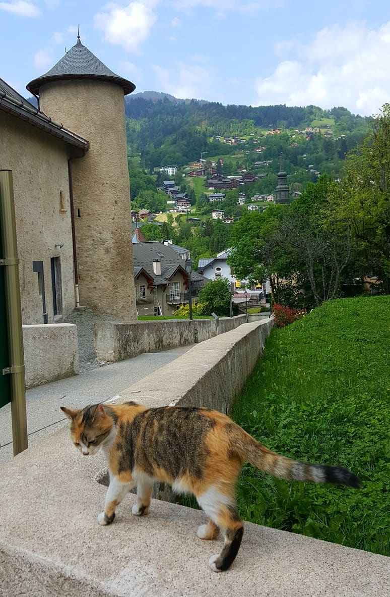 French Alps Trip Report: The village of St Gervais