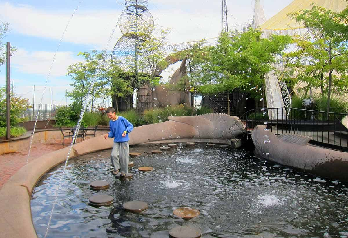 The pond on the roof of the City Museum, St. Louis