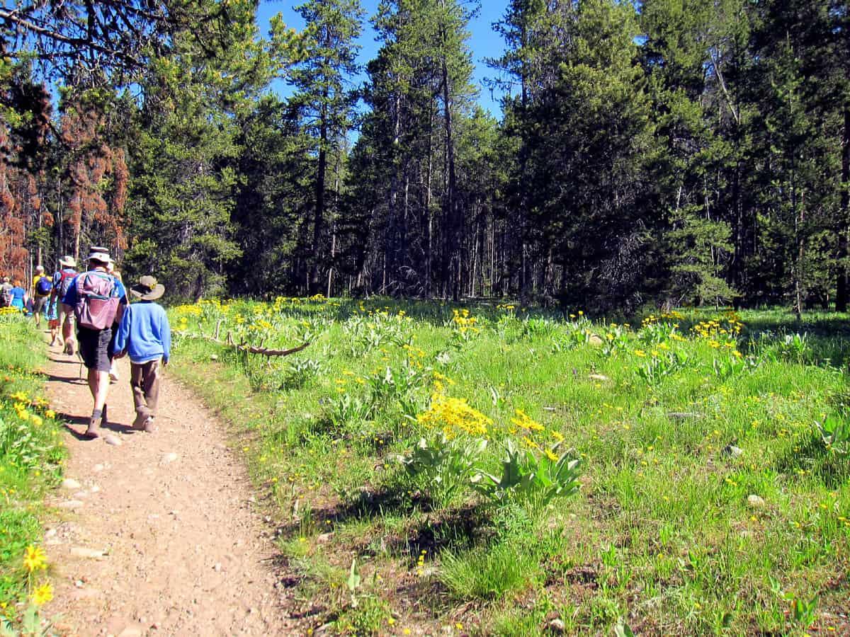 Hiking Grand Tetons National Park