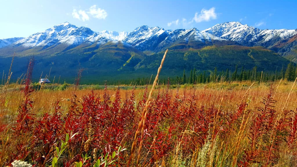 Driving the Alaska Highway - Kluane National Park