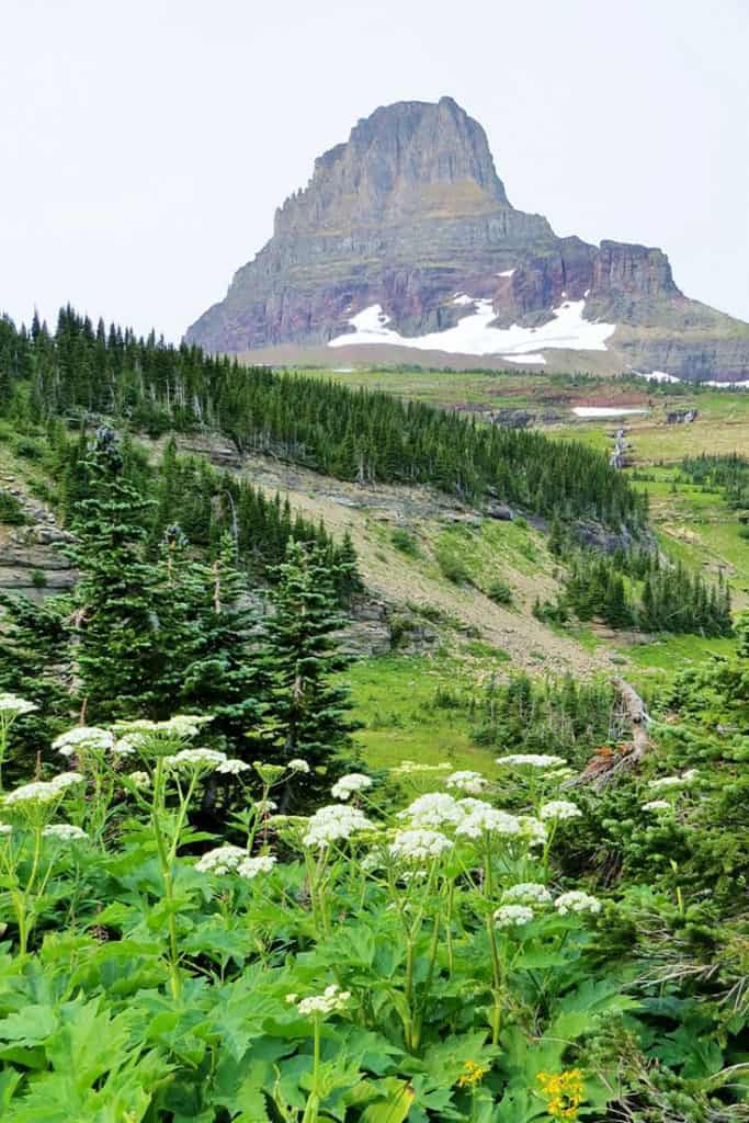 Glacier National Park in Summer - Glacier National Park Itinerary: A complete and illustrated day-by-day itinerary for visiting the most beautiful national park in the US!