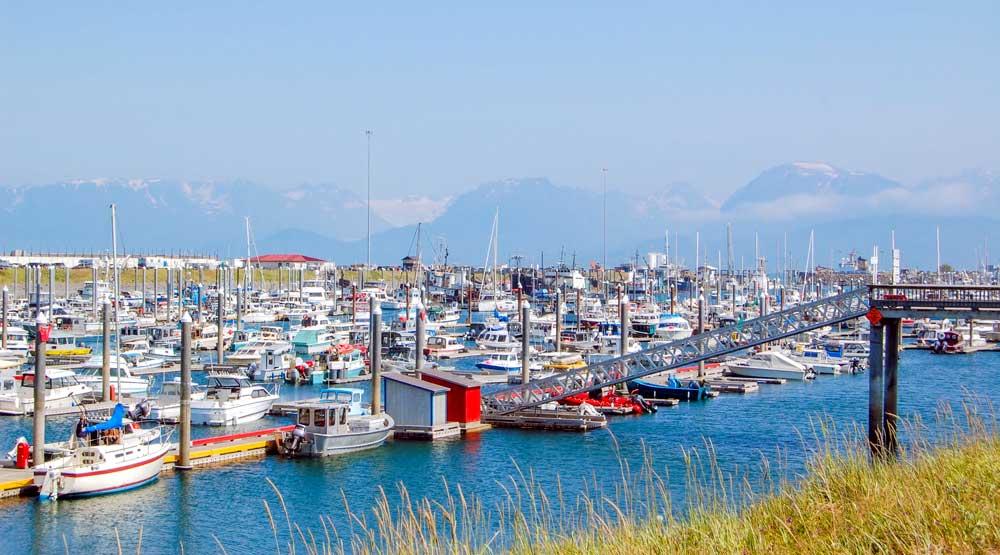 Alaska Bucket List: Homer, Kenai Peninsula, Alaska