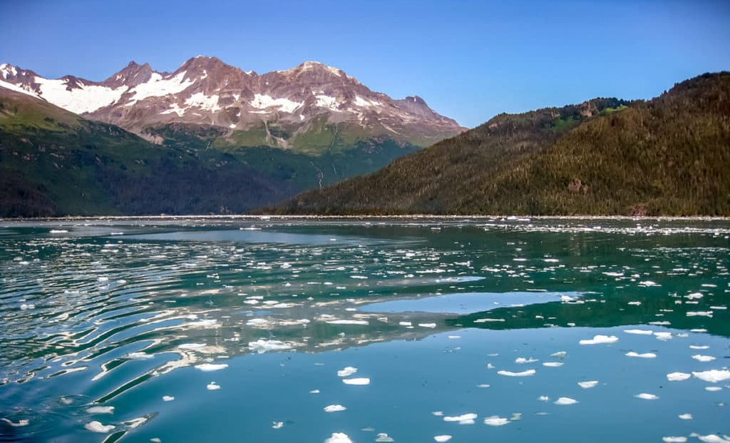 Views of the Kenai Fjords boat tour