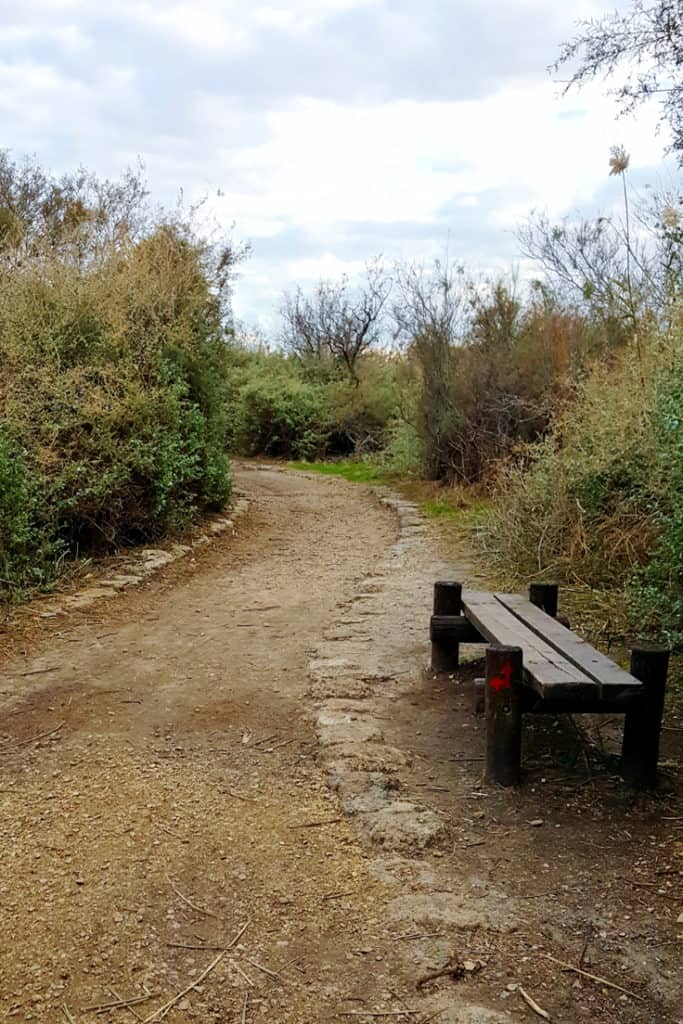 The Nahal Taninim visitors guide: along the red trail