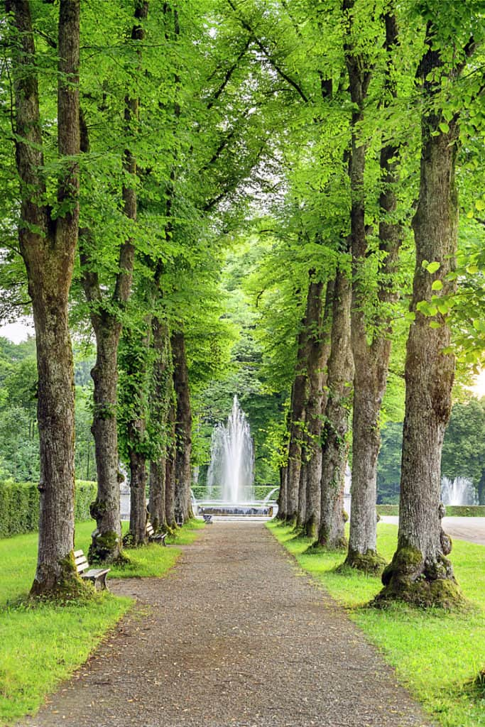 A stroll in the park... in Versaille. Read more in our guide for visiting Versailles, France.