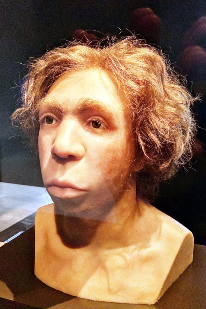 Berlin Trip Report - A Neanderthal in the Museum