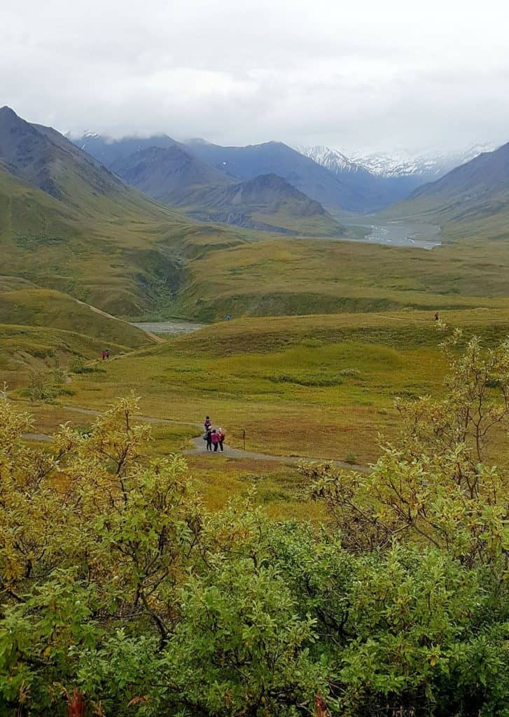 Views from Eielson Visitor Center - Denali National Park Trip Report