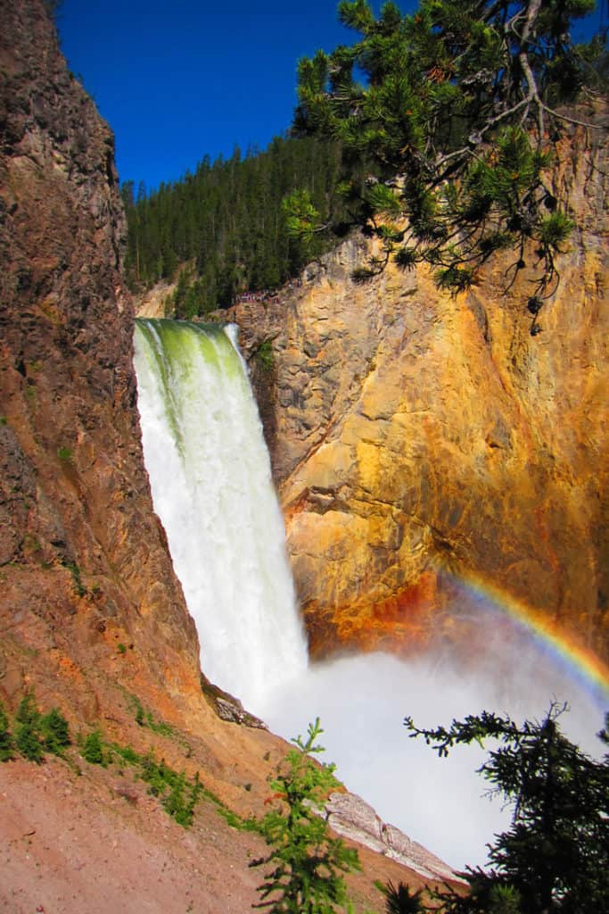10 Top things to do in Yellowstone National Park: Grand Canyon of the Yellowstone