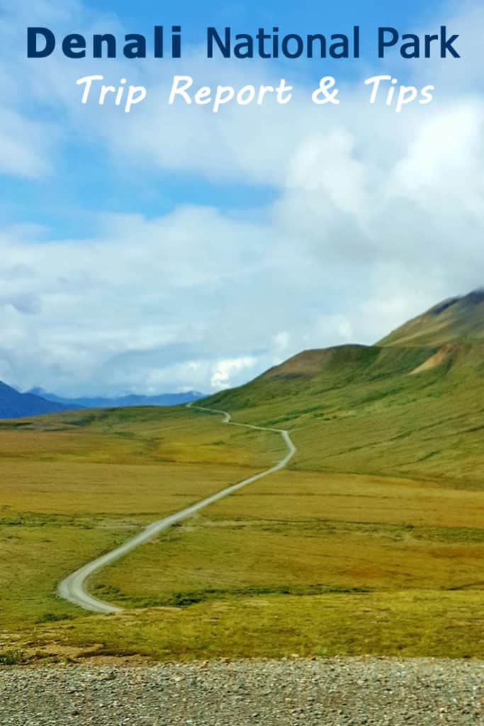 Alaska National Park: Visiting Denali