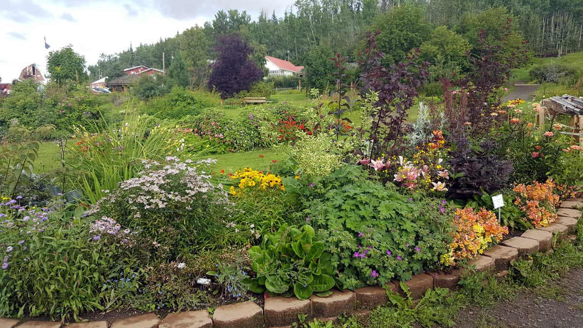 The Georgeson Botanical Garden in Fairbanks, Alaska – Trip Report