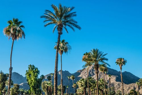 13 Fun Day Trip Ideas Around The Palm Springs Area