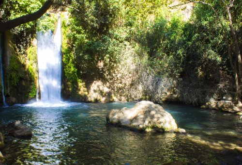 The Banias Nature Reserve, Israel: A Complete Visitor's Guide