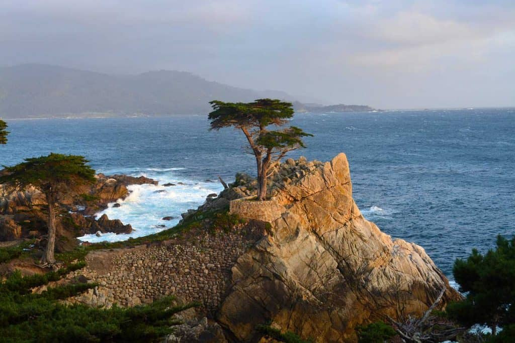 Lone-Cypress-at-Monterey