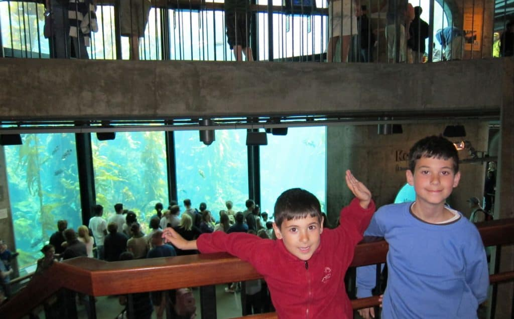 Our kids enjoying the Monterey Bay Aquarium