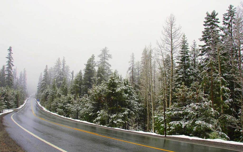 California State Route 88—Carson Pass Highway in a May snowstorm, in the Sierra Nevada.