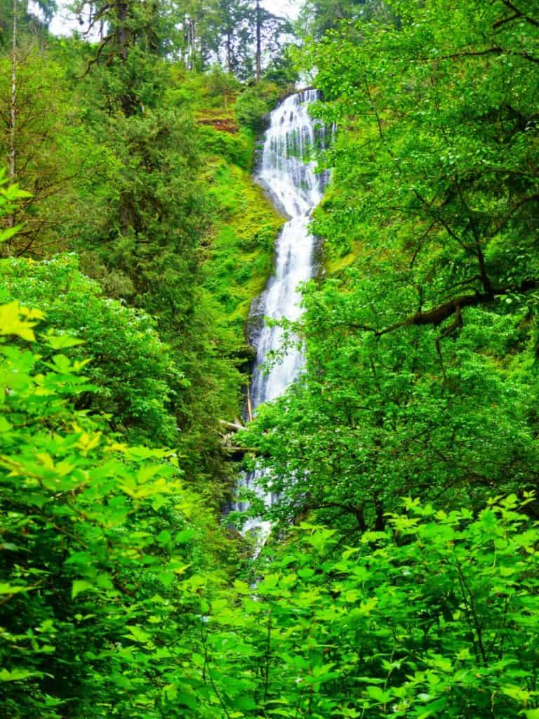 Munson Creek Falls in Tillamook County, Oregon