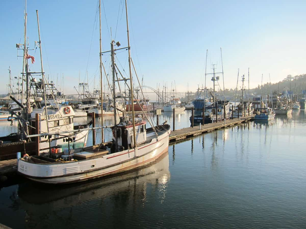 Read more about the article Top 10 Things to Do and See in Newport, or (Based on Our Experience)