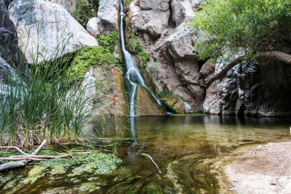 death valley oasis - darwin falls