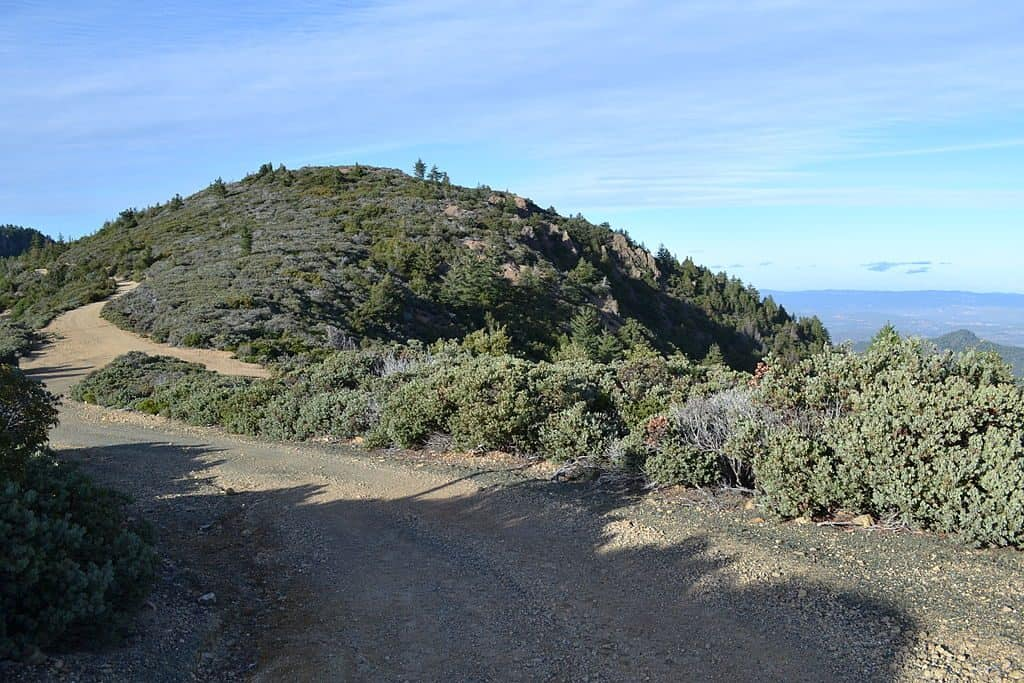 Trail in Robert Louis Stevenson State Park to the summit of Mount Saint Helena