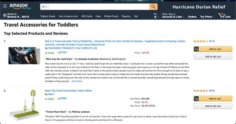 Amazon.com Toddler Travel Accessories website product page for Travel Accessories