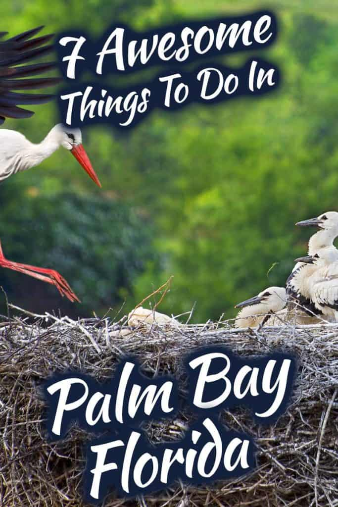 7-Awesome-Things-To-Do-In-Palm-Bay,-Florida