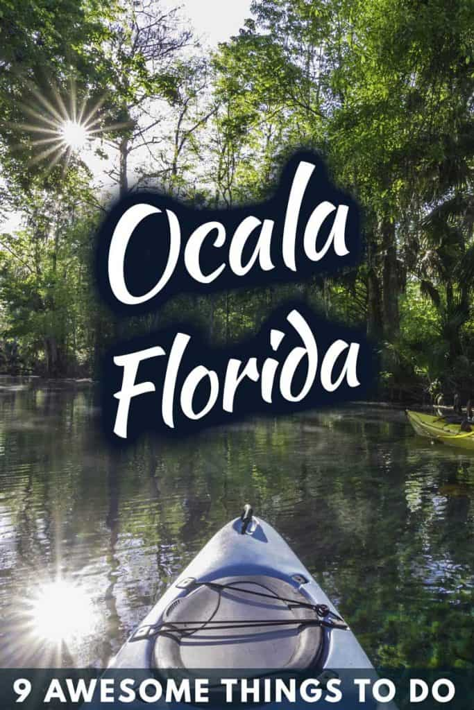9 Awesome Things To Do in Ocala, Florida