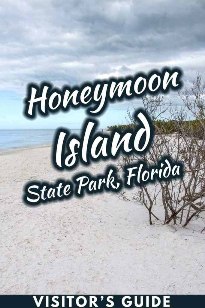 Honeymoon Island State Park, Florida: Visitor's Guide