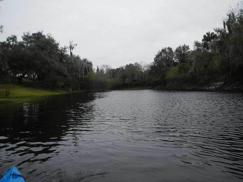 Kayaking the Peace River near Arcadia, Florida