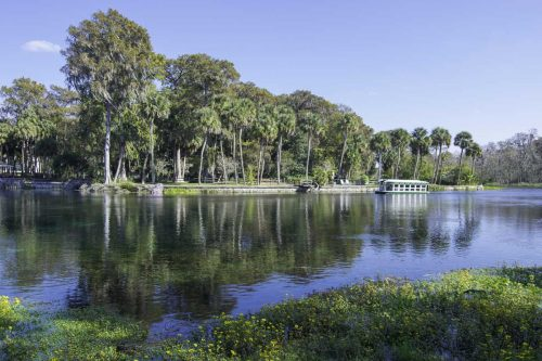 Silver Springs State Park: A Visitor's Guide