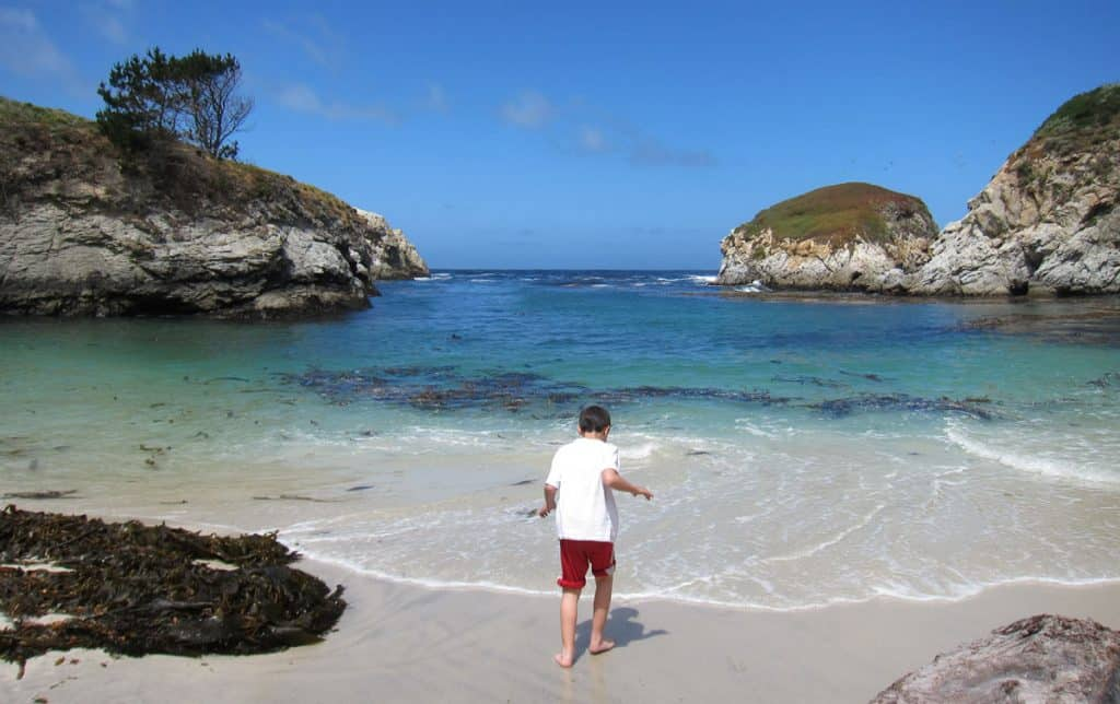 Our Dan getting his feet wet in China Cove, Point Lobos State Park