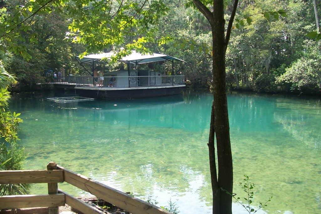 Beautiful lake at Homosassa Spring State Park