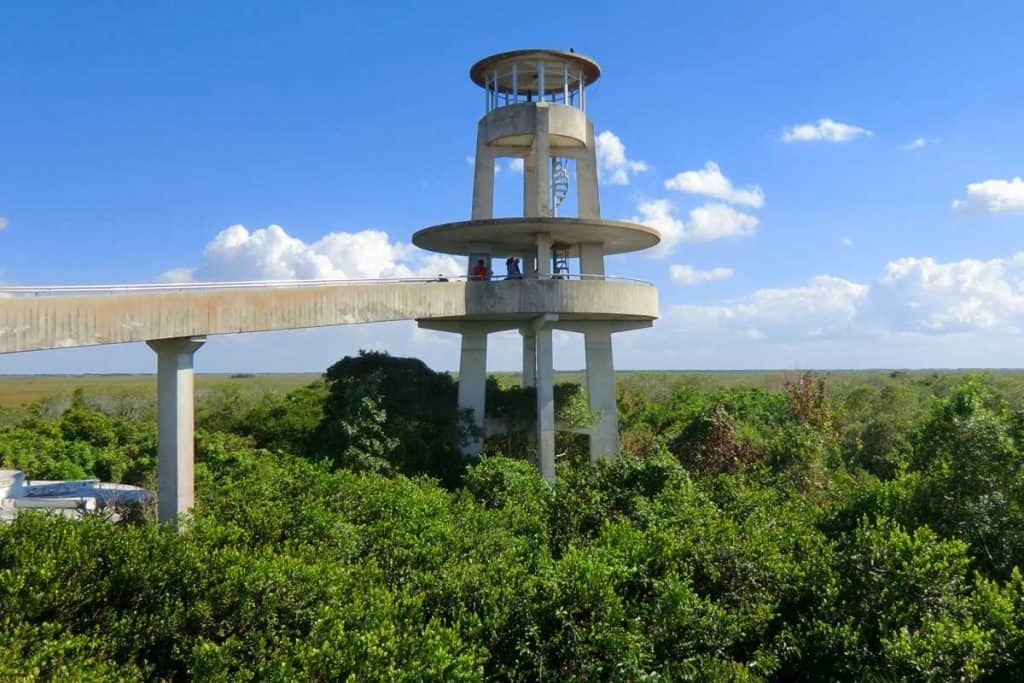 Perfect view of Shark Valley monument in Everglades, Florida