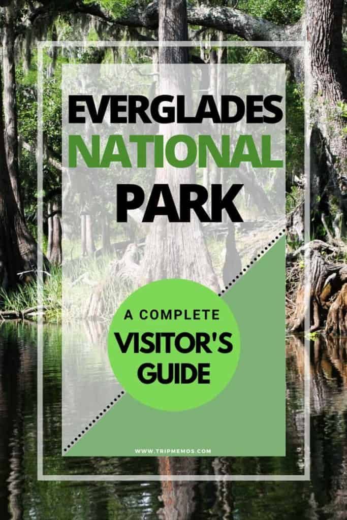 Everglades National Park A Complete Visitor's Guide