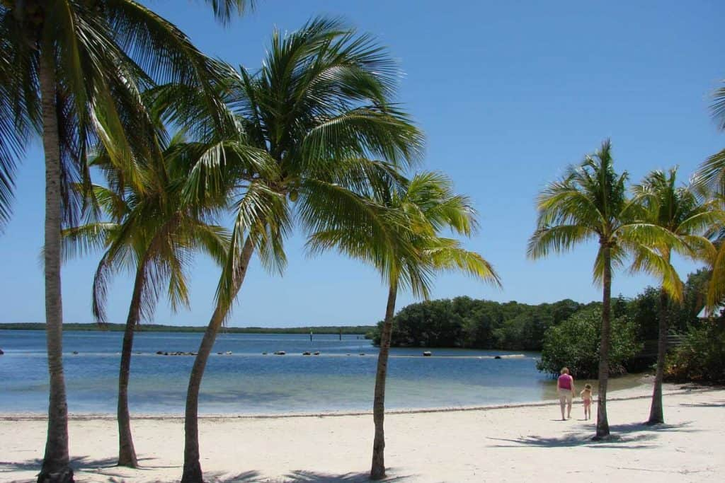 Beautiful beaches of Key Largo, Florida
