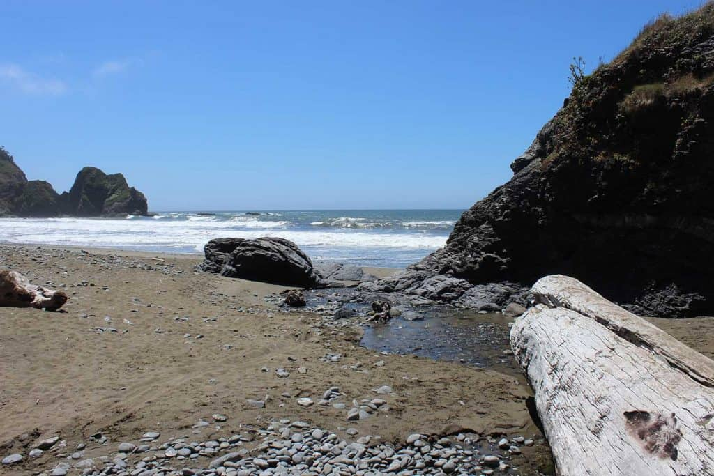 Driftwood rests on Enderts Beach in Redwood National Park