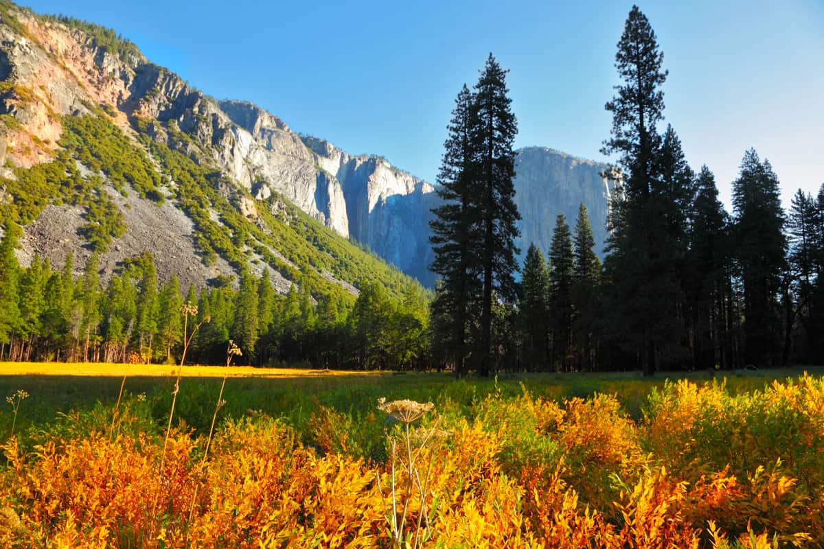 Valley-in-mountains-of-national-park.-Early-autumn