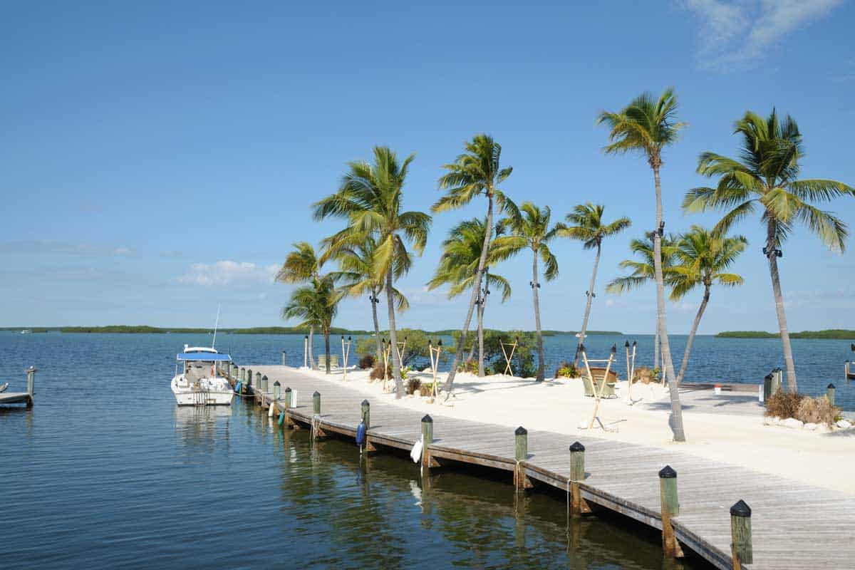 Jetty-and-Palm-Trees-on-Florida-Keys