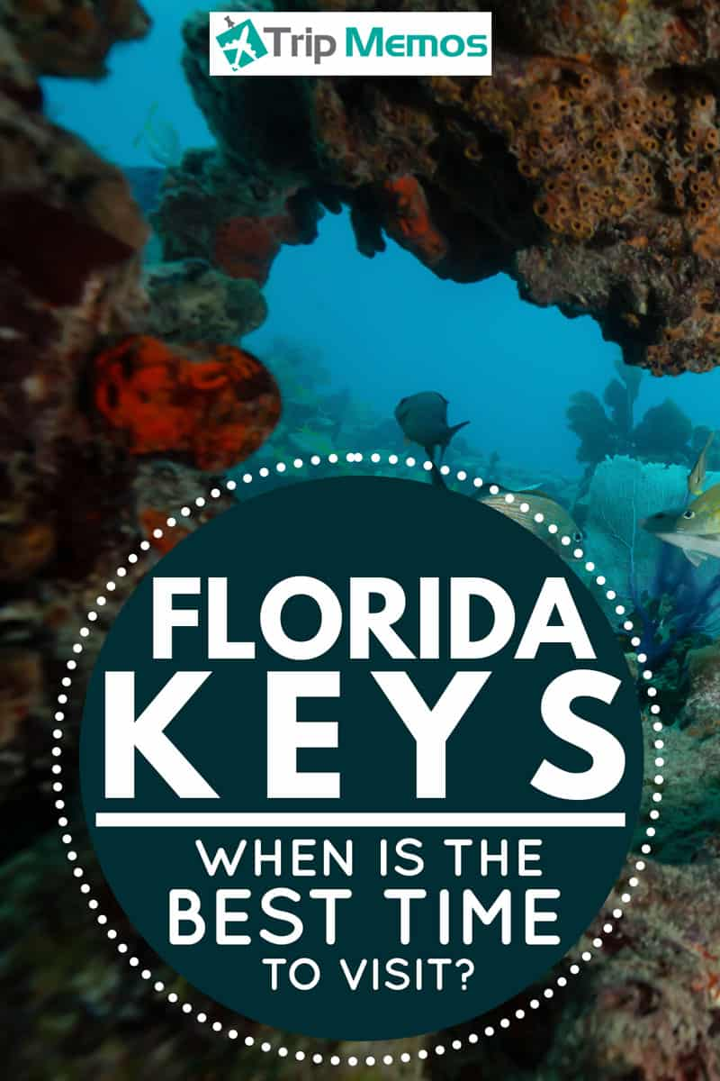 When-Is-The-Best-Time-To-Visit-The-Florida-Keys