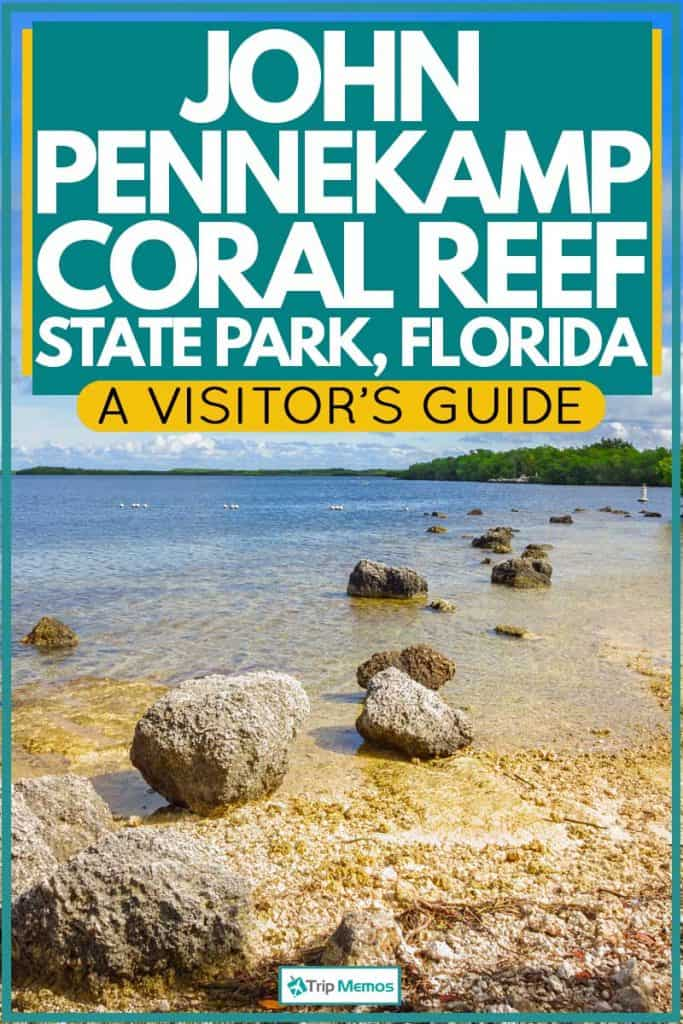 John Pennekamp Coral Reef State Park view at beach