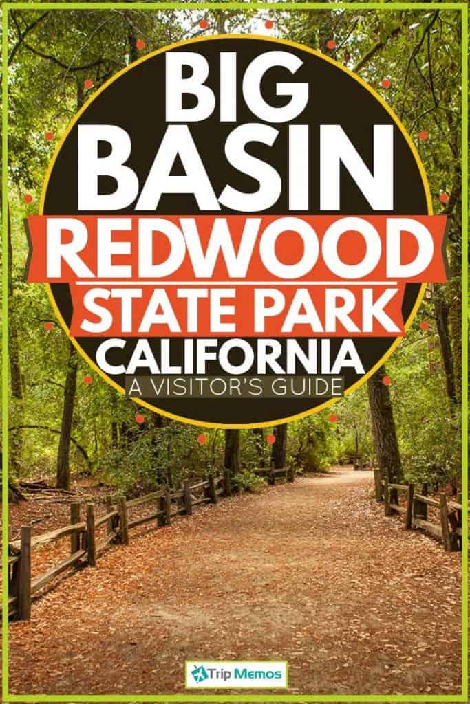 Huge Redwood trail at Big Basin Redwood Trail, Big Basin Redwoods State Park, CA - A Visitor's Guide