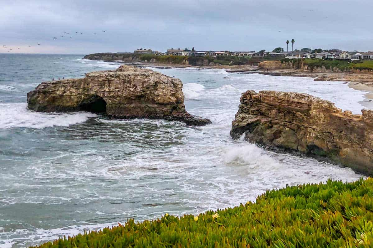 Natural Bridges State Beach, CA – A Visitor's Guide
