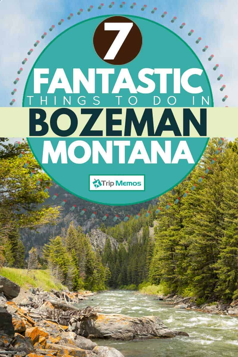 Gallatin River in Montana with Pine Trees and Mountains on the Background, 7 Fantastic Things To Do In Bozeman, Montana