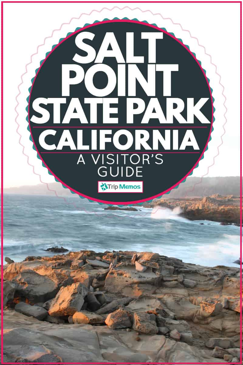 View of the Pacific Ocean on the Rocky Shoreline of Salt Point State Park, Salt Point State Park, CA - A Visitor's Guide