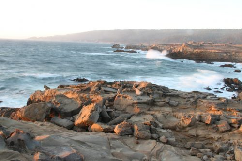 Salt Point State Park, CA – A Visitor's Guide