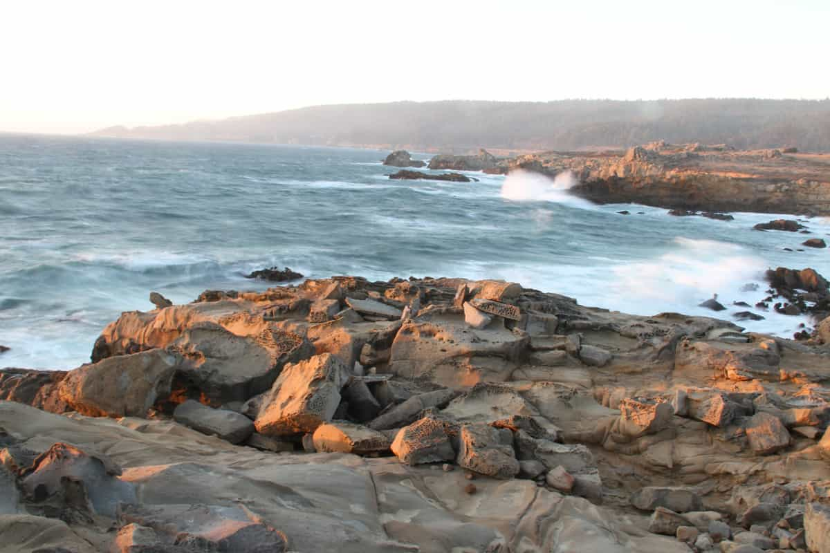 Read more about the article Salt Point State Park, CA – A Visitor's Guide