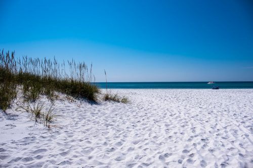 Read more about the article What To Do At The Gulf Islands National Seashore